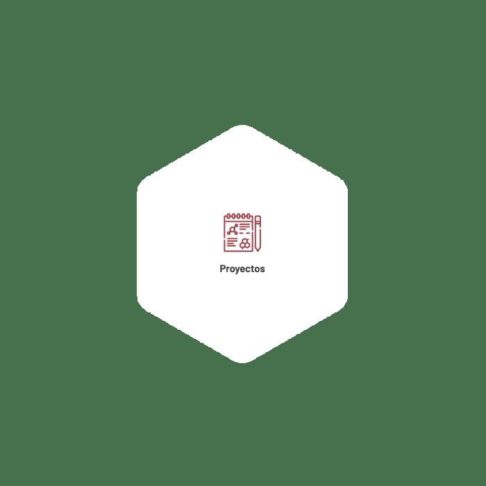 Proyectos - CICAP